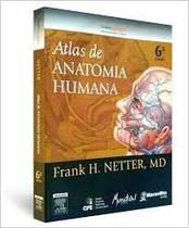 Netter - Atlas de Anatomia Humana - 6ª ed - Elsevier -