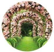 Painel Festa Redondo Decoração Arco de Flores 2,5x2,5m - Winn festas