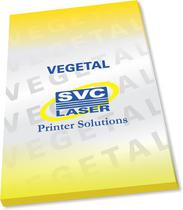 Papel Vegetal 90-95 g/m² - Formato A3 Extra (310x470mm) - Papéis Especiais