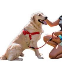 Peitoral e Guia para cachorros - Tamanho Grande - Vermelho - Petzoo