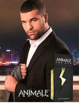 Perfume Animale For Men Eau de Toilette -  Masculino 100ml -