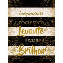 Placa Decorativa Saia Para Brilhar 23X16,8cm DHPMH-004 - Litoarte -