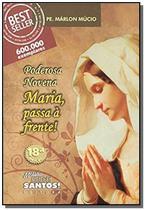 Poderosa novena maria passa a frente - Missao sede santos - ponto cat -