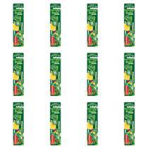 Powerdent Palmeiras Escova Dental Macia + Protetor (Kit C/12) -