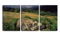 Quadro canvas 45x96 pedra no pé da montanha - Crie Life