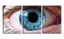 Quadro Decorativo 45x96 detalhes olho azul aberto - Crie Life