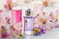 Quadro Decorativo Canvas p/ Lavabos Banheiros Clínicas Estética Spas Perfume - Incasa Design