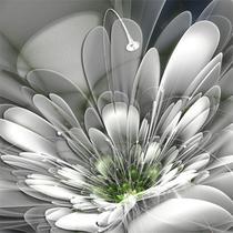 Quadro Decorativo Canvas p/ Lavabos Quartos Salas Varandas Abstrato Flower - Incasa Design