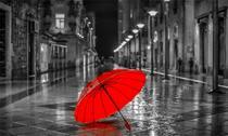 Quadro Decorativo Canvas p/ Sala Quarto Escritório Consultório Red Umbrella - Incasa Design