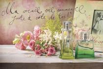 Quadro Decorativo em Canvas Retro para Quartos Vintage Perfume - Incasa Design