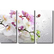 Quadro Decorativo Galho De Orquídea 3 Peças Para Sala - Quadro Decorativos