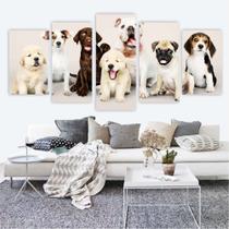 Quadro Decorativo Mosaico Pet Shop Cachorro Gato - Adoro Decor
