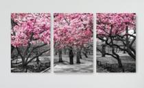 Quadro Mosaico 3 Peças Árvore/cerejeira Rosa/paisagem - Paradecoração