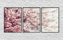 Quadros Decorativos Arvore Paisagem Flor de Cerejeira Rosa - Center Molduras