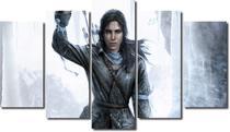 quadros decorativos jogo rise of the tomb raider para quartos e salas 5 peças -