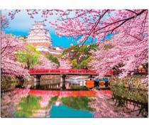 Quebra-cabeça - Cores da Ásia  1000 peças - Japão - Toyster -