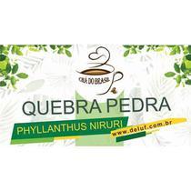 QUEBRA PEDRA - 500g - CHA DO BRASIL -