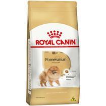 Ração Cão Pomeranian Adult Para Cães Adultos Pomeranian - Royal Canin -