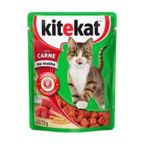 Ração para Gatos KiteKat Adulto Sabor Carne 70g -