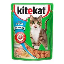 Ração para Gatos KiteKat Adulto Sabor Peixe 70g -