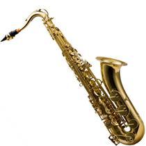 Saxofone Tenor Com Afinação Em Bb Laqueado Hts100l Harmonics -
