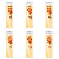 Seda Mel Antiquebra Shampoo 325ml (Kit C/06) -