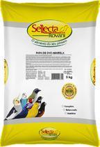 Sellecta papa de ovo amarela - 5 kg - Marca