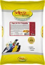 Sellecta papa de ovo vermelha - 1 kg - Marca