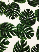 Tecido para decoração Jacquard Costela De Adão branco verde - Tmdecor