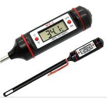 Termômetro Digital 23cm Culinário Alimentos e Bebidas Espeto - Chen