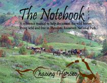The Notebook - Chasing horses