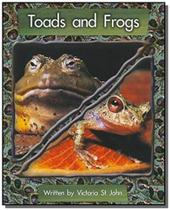 Toads and frogs - Diversas