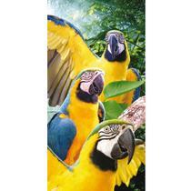 57e91951a Toalha de Praia Aveludada Buettner - Mult Macaws - Bouton