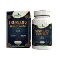Tribulus Terrestris 60 Cáps 400 mg Katigua - Katiguá