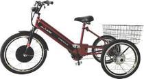 Triciclo Elétrico Duos Sport 800W 48v 15ah Vermelho -