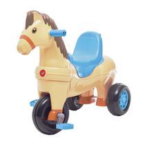 Triciclo Infantil Calesita Carrinho De Passeio Poto 2 Em 1 -
