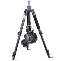 Tripé Monopé Q555 Para Câmera Com Cabeça Profissional - Qzsd