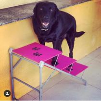 Tubline Escada BIG até 40 kilos Para Cães Cachorro Dobravel Pet cor ROSA 7705-N07 -