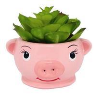 Vaso Cachepot em Cerâmica Porco (6,5cm) - Relaxar e meditar