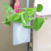 Vaso de Plantas Silicone Adesivo Vidro Parede Decoracao Flor Agua Kit 2 - Ideal