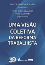 Visão Coletiva Da Reforma Trabalhista, Uma - Lumen juris -