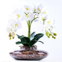 Arranjo com 4 Orquídeas Brancas Toque Real em Terrário