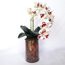 Arranjo de Orquídea Artificial Tigre em Vaso Tubo Gaia