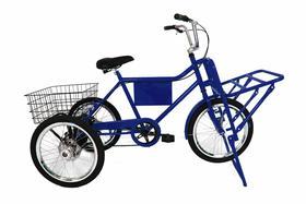 Bicicleta Triciclo de Carga Com Marchas e Freios A Disco