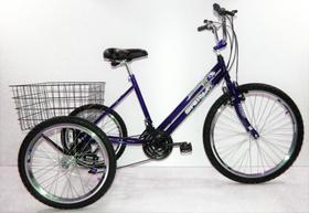 Bicicleta Triciclo Luxo Aro 26 Completo 21 Marchas Rebaixado