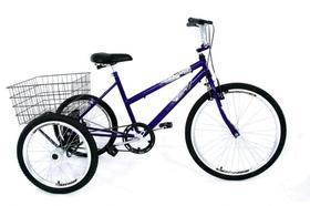 Bicicleta Triciclo Luxo Aro 26 Completo
