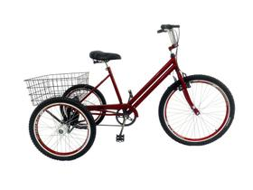 Bicicleta Triciclo Luxo Aro 26 Completo Rebaixado