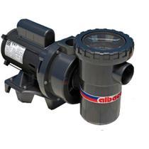 Bomba Albacete com Pré-filtro -  APP 1 1/3 CV  110/220 Monofásica