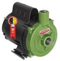 Bomba schneider centrifuga 0.33cv 220v bc-98 0.33 m 60