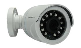 Câmera De Segurança Falsa Com Infra, Leds reais - Plástico
